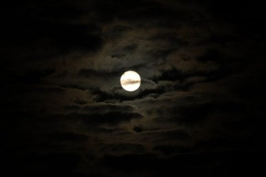 November 20th, 2010 The Moon