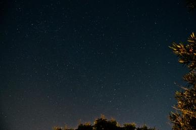 August 11th, 2013 Stars
